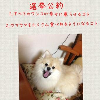 fc2blog_20140123204153aae.jpg