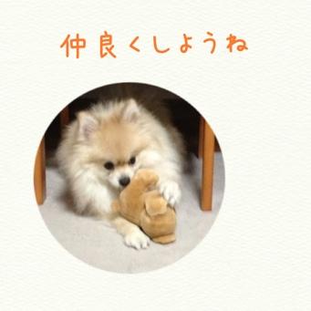 fc2blog_201402022146537da.jpg