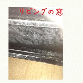 fc2blog_201402052223367fc.jpg