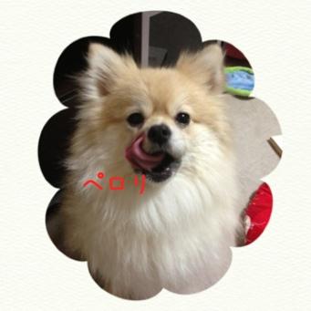 fc2blog_20140205222729c72.jpg