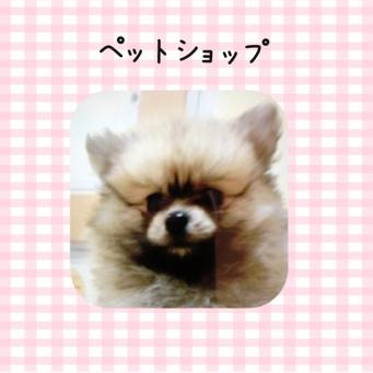 fc2blog_2014020620534425e.jpg