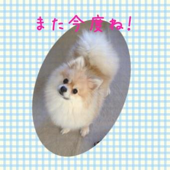 fc2blog_201402091813122a5.jpg