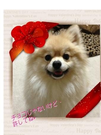fc2blog_2014021418581853e.jpg