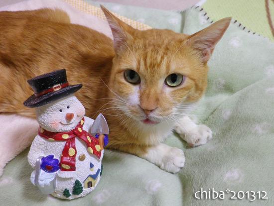 chiba13-12-92.jpg