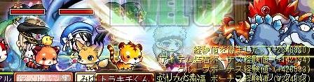 Maple120808_002714.jpg