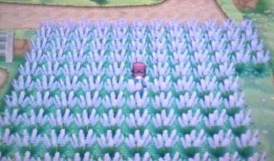 pokemonXYme 2