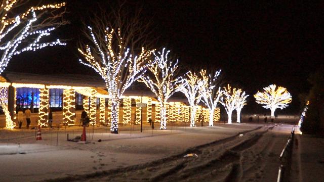 国営越後丘陵公園のクリスマスイルミネーション