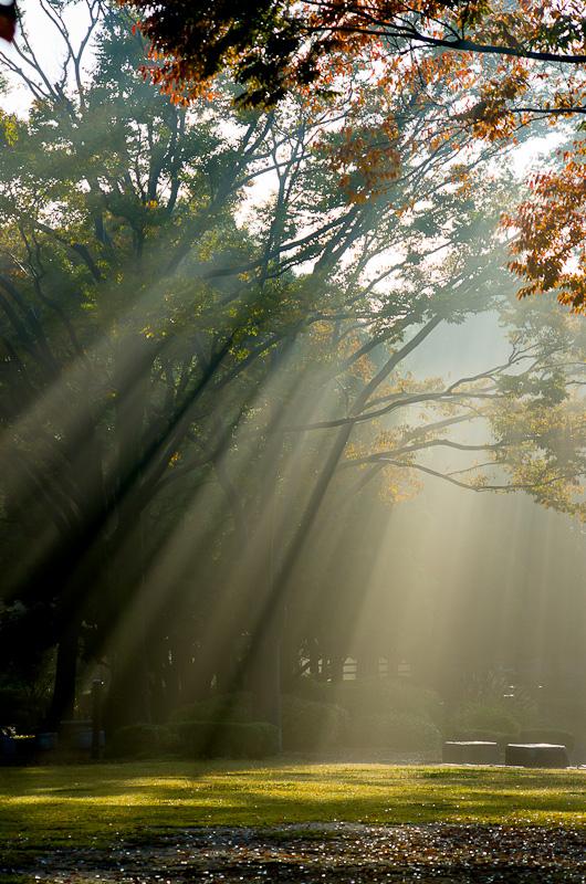 20121107-IMGP2588.jpg