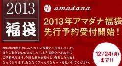 2013アマダナ福袋