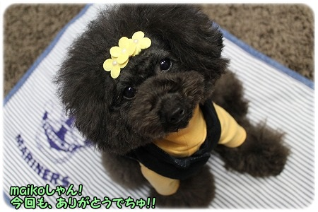 maikoさん、今回のお洋服もカワイイです~ ありがとう!