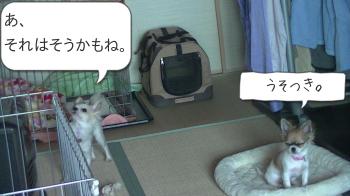 20130522_1.jpg