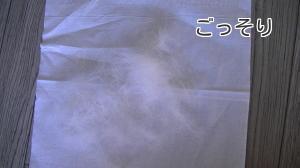 sakura_hair.jpg