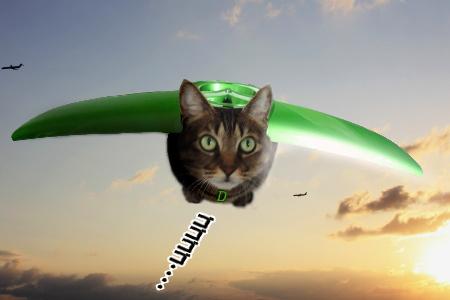 デミオウィングは空を飛び