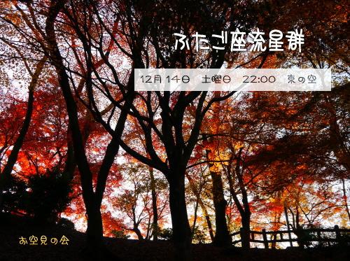 2013121200363555c.jpg