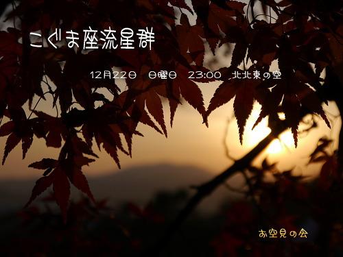 201312190053128e5.jpg