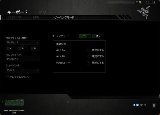 BlackWidow_2013-JP_43b.jpg