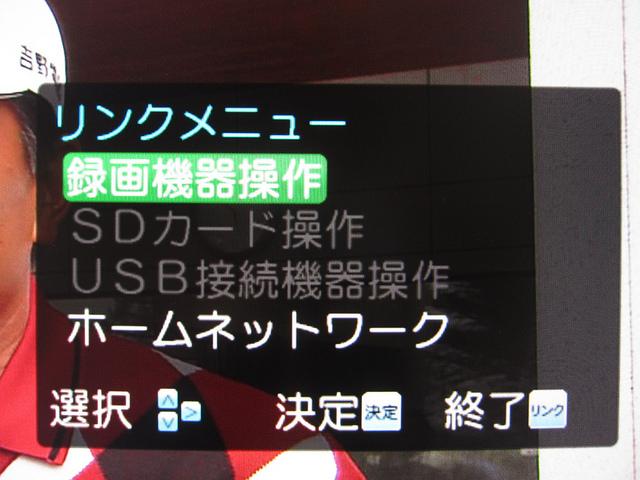 DTH310R_34.jpg