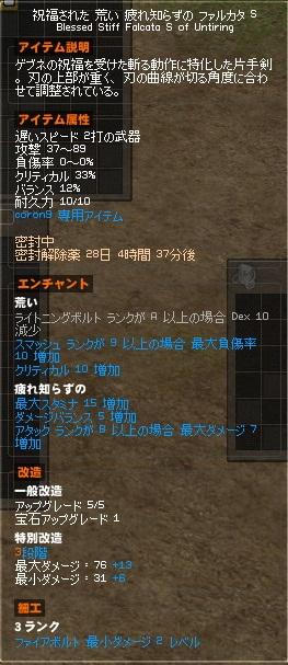 10詳細 ファルカタ 完成 2