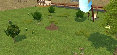 農場 願い事の木 変身 2