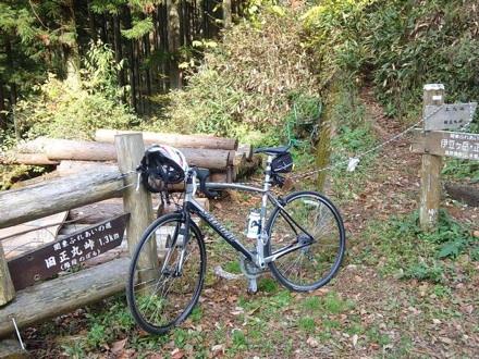 20111113_shoumaru.jpg