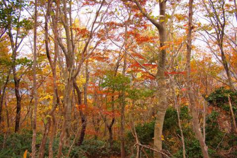 takadake_20121028_153.jpg