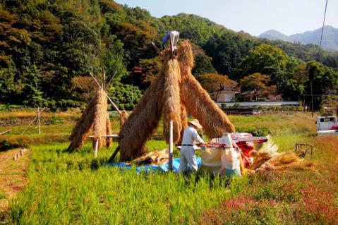 yama_20121021_122.jpg