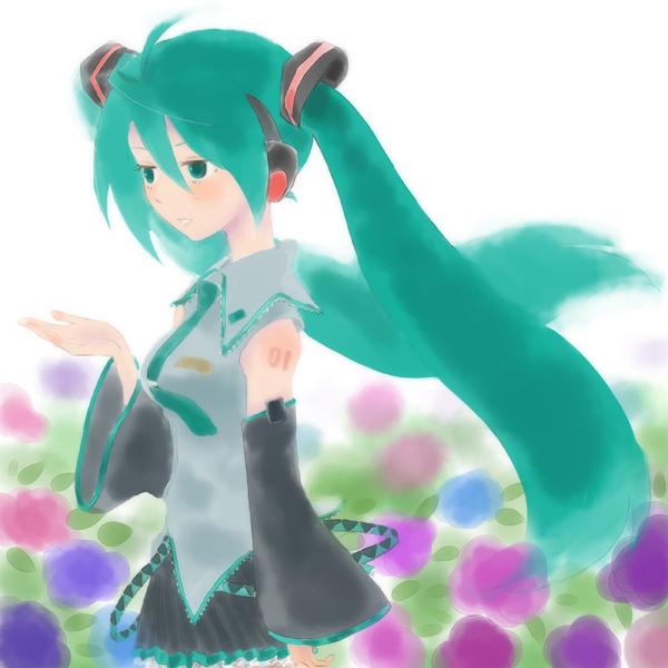 miku_0612b.jpg