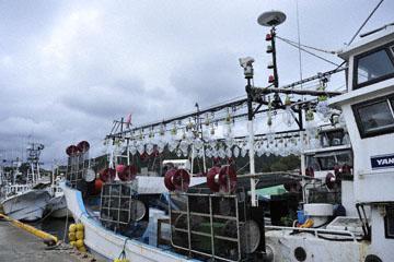 blog Miyagi, Kesennuma, Fishing Boat_DSC0109-10.21.11 (2)