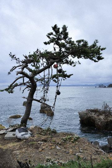 blog Miyagi, Kesennuma, Iwaisaki_DSC0130-10.21.11 (2)