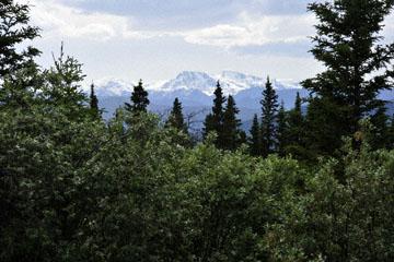 blog 139 After Burwash Landing, Kluane Mountains, Mt Logan (19K+), Yukon, Canada_DSC0229-6.24.12 (1)