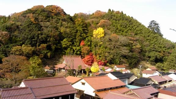 観世音寺から街並みを臨む 絶景紅葉