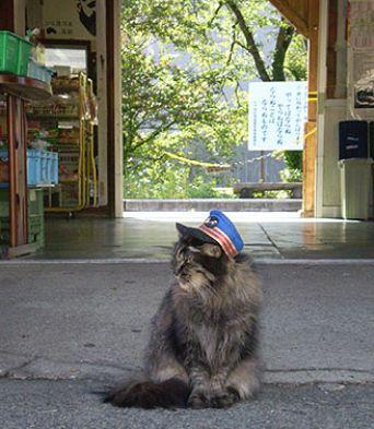 ばす駅長、午前午後のラッシュ時は必ず観光客のお出迎え