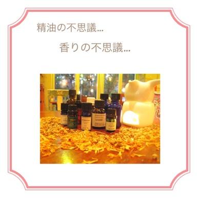 fc2blog_2012061402543686d.jpg