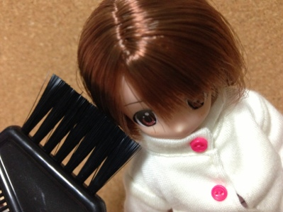 fc2blog_20121220103337651.jpg